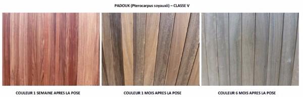 terrasse bois exotique padouk terrasse bois exotique bois construction am nagement amiens. Black Bedroom Furniture Sets. Home Design Ideas